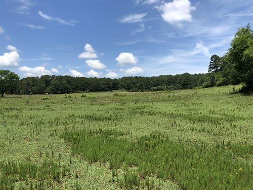 21.01 Acres A-1 Bartow County, GA : Emerson : Bartow County : Georgia