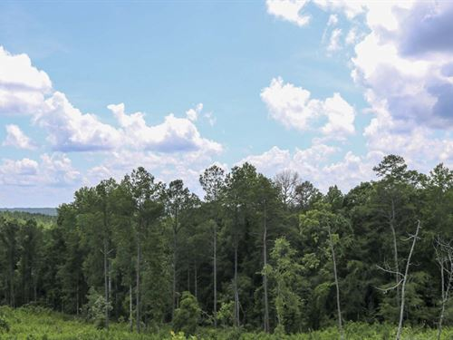 154 Acres In Smith County In Raleig : Raleigh : Smith County : Mississippi