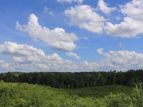218 Acres In Smith County In Raleig : Raleigh : Smith County : Mississippi