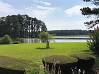 Eastman Ponds Estate : Eastman : Dodge County : Georgia