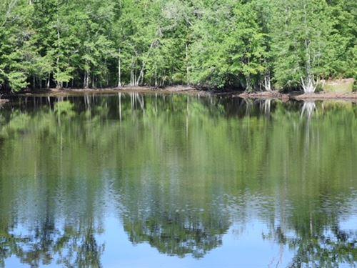 Pond & Cabin + Big Creek : Junction City : Talbot County : Georgia
