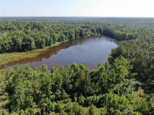 56.84 Acres Spooner Rd Gadsden, FL : Quincy : Gadsden County : Florida