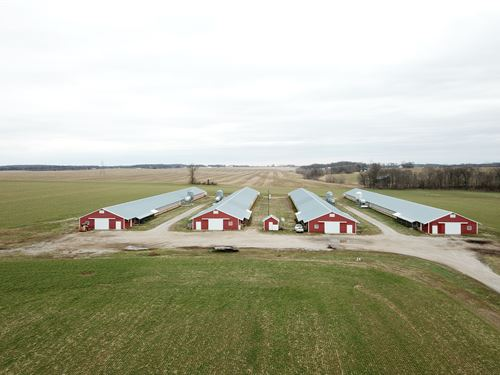 4 House Breeder Hen Farm : Adairville : Logan County : Kentucky