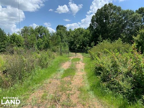 Land Near Raymond, Hinds County MS : Raymond : Hinds County : Mississippi