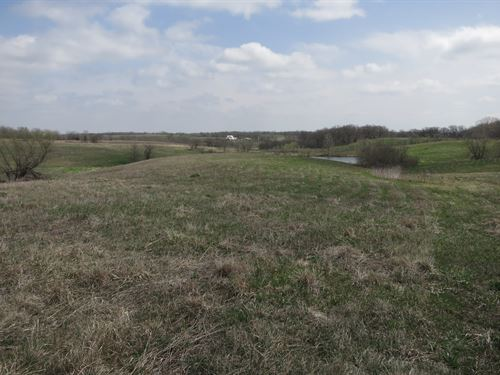 Crp Farm For Sale in NW Missouri : Blythedale : Harrison County : Missouri