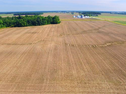 Land Auction In Indiana : Columbia City : Whitley County : Indiana
