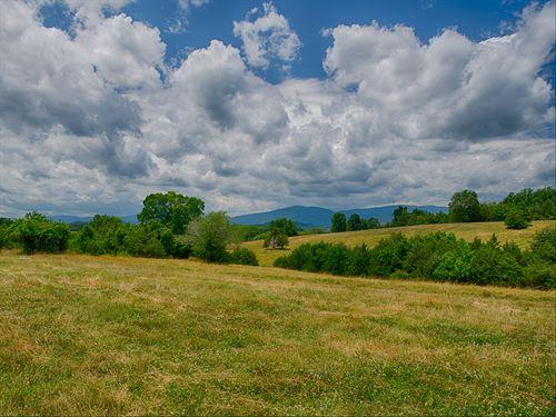 Beautiful 45 Acre Farm : Madison : Virginia