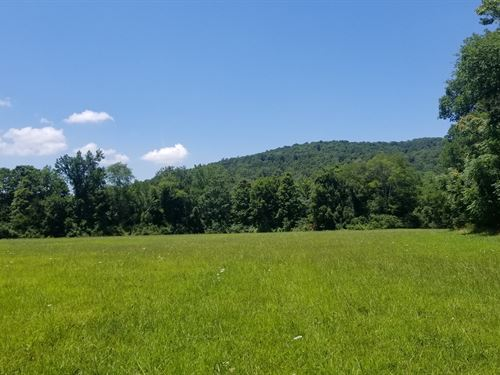 Unrestricted Pasture Land, Creek : McMinnville : Warren County : Tennessee