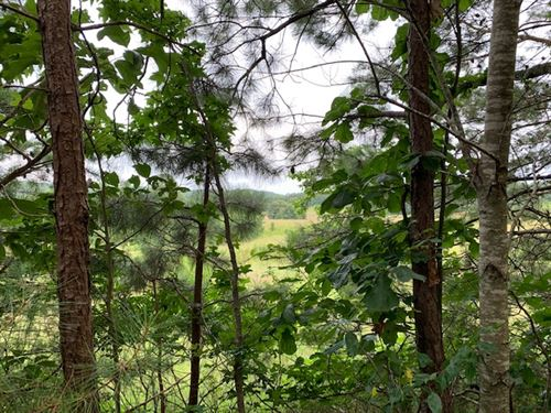 92 Acres With Easy Accessibility : Rockmart : Polk County : Georgia