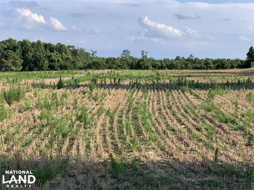 Hatcher Road Home-Site With Acreage : Selma : Johnston County : North Carolina