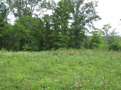 29.95 Ac, Totally Wooded, Mtn Views : Celina : Clay County : Tennessee