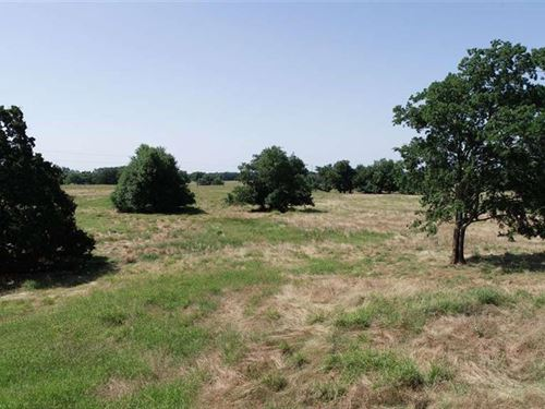 Pasture Land With Pens And Corral : Cooper : Delta County : Texas