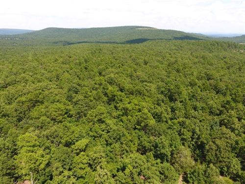 46.7 Acres Heavily Wooded Hunting : Wister : Le Flore County : Oklahoma