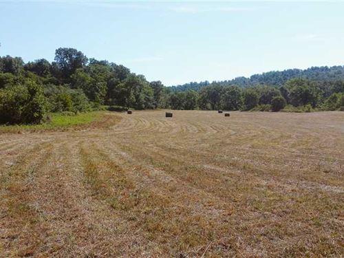 170 Acre Property, Gorgeous Build : Leadmine : Dallas County : Missouri
