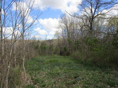Wooded, Recreational, Land, Adair : Columbia : Adair County : Kentucky