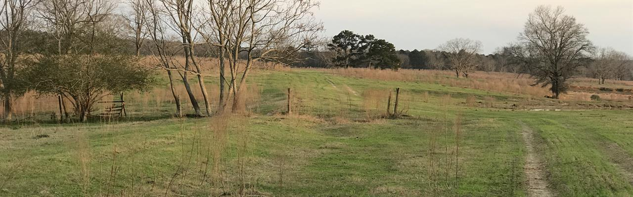 Cattle Ranches for Sale : RANCHFLIP