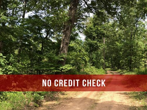 $500 Down On 20 Acres With Power : Gainesville : Ozark County : Missouri