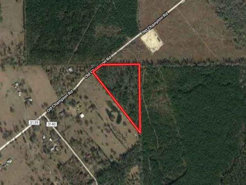 Unrestricted 10 Acres In Orange, Tx : Orange : Newton County : Texas