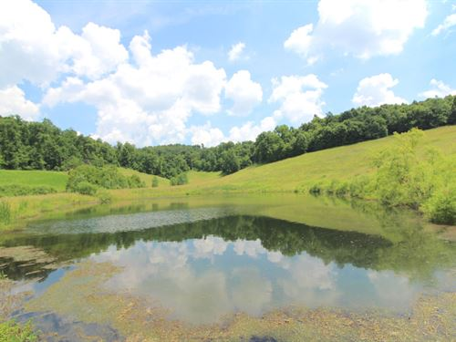 Sr 258, 73 Acres : Newcomerstown : Tuscarawas County : Ohio