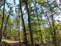 Crouch Hollow Tract : Charleston : Kanawha County : West Virginia