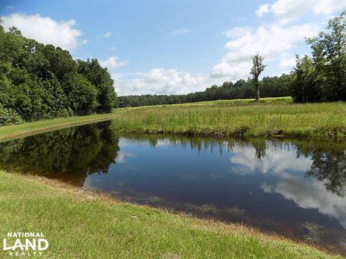 Grant Tract Hunting Preserve : Smoaks : Bamberg County : South Carolina