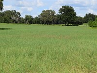 Owner Finance, 10 Acres Lake Access : Brooksville : Hernando County : Florida
