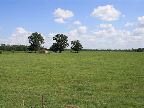 The Dr Ranch : Callahan : Nassau County : Florida
