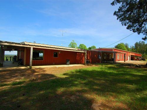 Calynn Plantation 1100 Ac : Abbeville : Henry County : Alabama