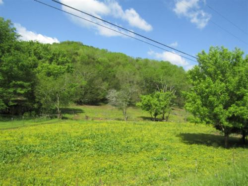 39+ Ac Farm, Home, Pole Barn, Creek : Whitleyville : Jackson County : Tennessee