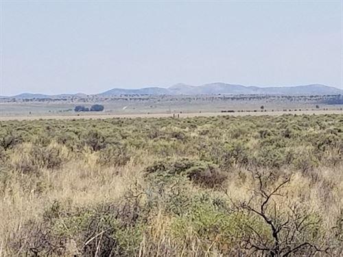 Off Grid Vacant Land Estancia NM 40 : Estancia : Torrance County : New Mexico