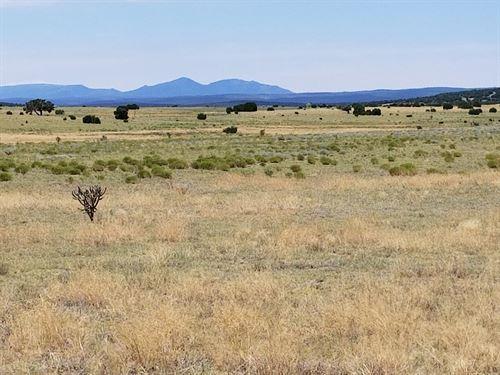 60 Ac Estancia Valley NM Ranchette : Moriarty : Torrance County : New Mexico