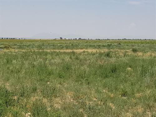 Moriarty NM Land Ranchette Estancia : Moriarty : Torrance County : New Mexico