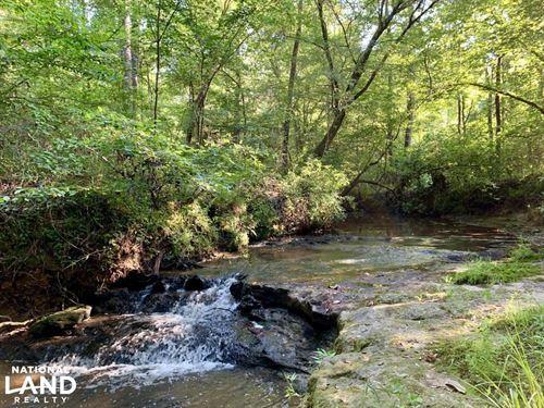 The Turkey Creek Hunting & Timber : Pine Apple : Monroe County : Alabama
