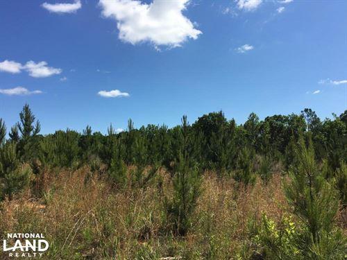 Union County Homesite And Hunting : Union : South Carolina