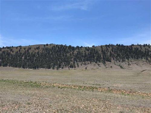 Spinney Mountain Reservoir Hillsid : Hartsel : Park County : Colorado
