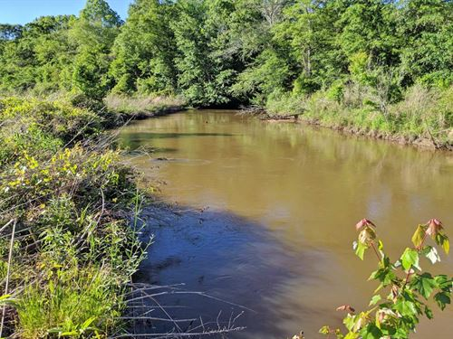 The Highland River Property : Skipperville : Dale County : Alabama