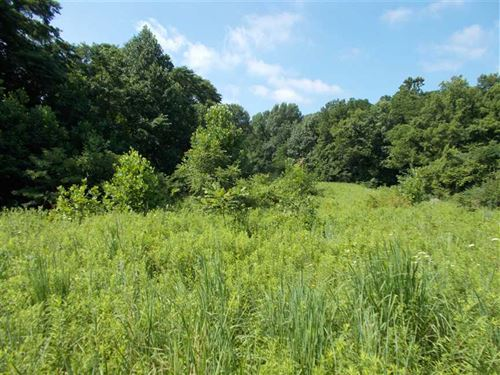 Land For Sale Vermillion County In : Cayuga : Vermillion County : Indiana
