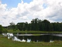 Moulton Alabama Land Auction : Moulton : Lawrence County : Alabama