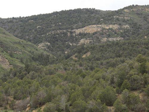 Trail Canyon Ranch : Loma : Garfield County : Colorado
