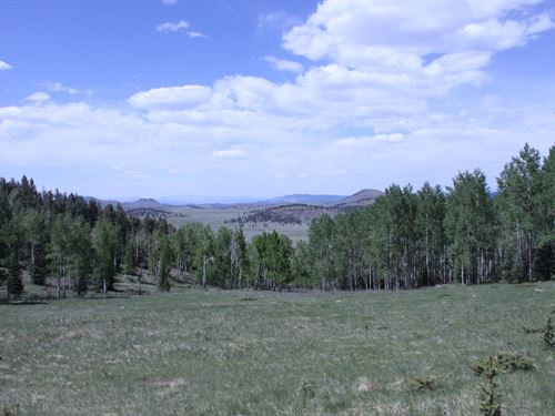 Eagles Eye Ranch : Westcliffe : Custer County : Colorado