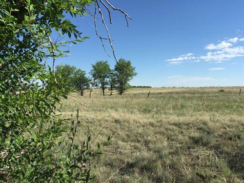 Calhan Homestead Quarter : Calhan : El Paso County : Colorado