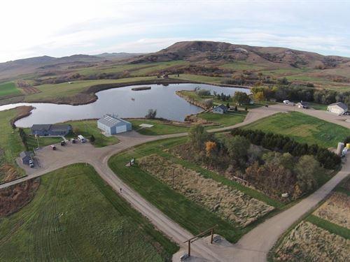Diamond A Pheasant Ranch : Gregory : Tripp County : South Dakota