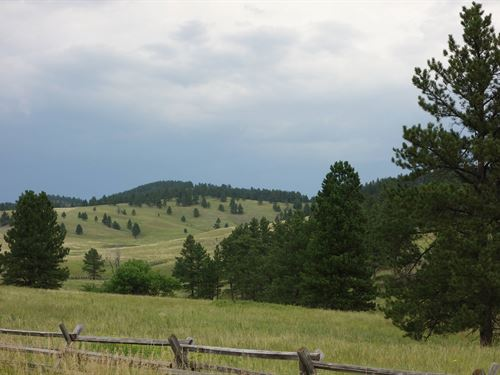 Cobb Ridge Ranch : Hermosa : Custer County : South Dakota