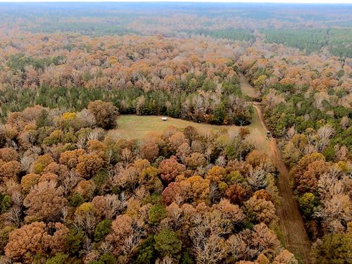 High Fence Game Preserve for Sale : Salem : Lee County : Alabama