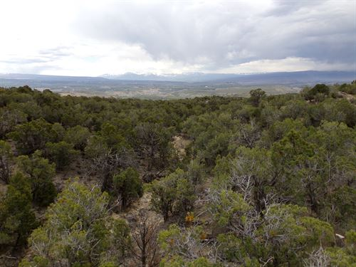 Tongue Creek Ranch Lot 2 : Cedaredge : Delta County : Colorado