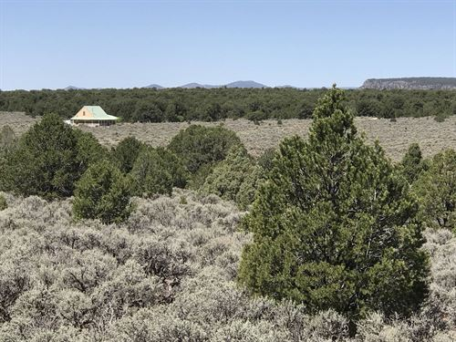 Big Sage 200 Acres + Home, New : Tres Piedras : Taos County : New Mexico