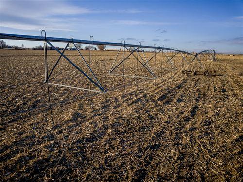 Severance Farm : Greeley : Weld County : Colorado