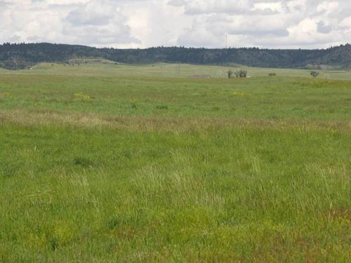 Torbert Views 160 : Big Timber : Sweet Grass County : Montana