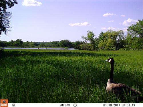 The Stunning Lake Estate : Lawrence : Douglas County : Kansas