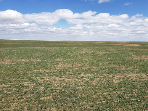 Fike's Quarter : Matheson : Elbert County : Colorado